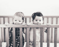 Black and white portrait of two cute adorable funny babies siblings friends of nine months standing in bed crib Royalty Free Stock Photo