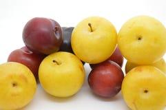 Fresh prunes fruit food. Black white prunes fresh prunes royalty free stock images