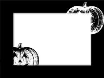 Black and white pumpkin. On black frame Royalty Free Stock Photos