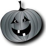 Black and White Pumpkin Stock Photos
