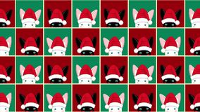 Black White Rabbit Chess board Christmas Red Green Background. stock video footage