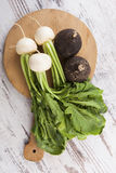 Black and white radish. White and spanish radish on round wooden cutting board on white wooden textured background, top view. Culinary healthy vegetable eating Royalty Free Stock Photography