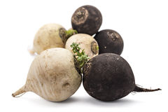 Black and white radishes Royalty Free Stock Photo