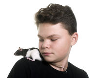 Black and white rat and teen Royalty Free Stock Photography
