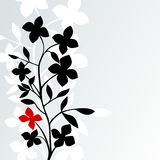 Black White Red Royalty Free Stock Photos
