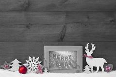 Black White Red Christmas Background Snow Frame Merry Xmas. Black And White Christmas Decoration With Reindeer Christmas Trees Snowflake Red Ball On Snow Royalty Free Stock Images