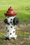 Black, white, and red fire hydrant Stock Photo