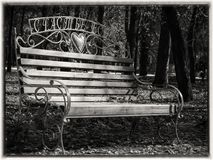Bench in autumn park with fallen leaves in black and white Stock Images