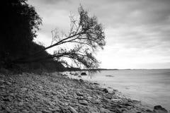 Black & White rocky Stock Images
