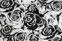 Black and white roses Royalty Free Stock Images