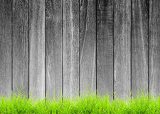 Black and white rough wood plank with green grass Stock Image