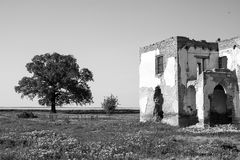 Black and white ruined house in the field Royalty Free Stock Images