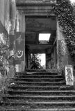 Black and White Ruins 2. Nature and graffiti have taken over the ruins of the old Western Washington State Mental Hospital. Located in Steilacoom, WA Stock Image