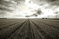 Black and white rural landscape. Stock Photography
