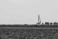 Black and White Sailboat Stock Photography