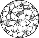 Black and white sakura pattern. Natural motive royalty free illustration