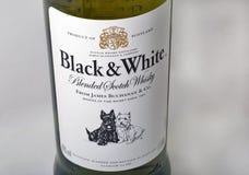 Black and White Scotch Whisky bottle closeup Royalty Free Stock Photo