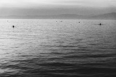 Black and white sea sunset Stock Images