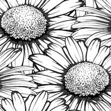 Black and white seamless background with flowers daisy. Royalty Free Stock Image
