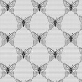 Black and white seamless  with butterflies on the voile Royalty Free Stock Photo