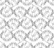 Black and white seamless floral pattern. Vintage illustration floral pattern background Royalty Free Stock Photography