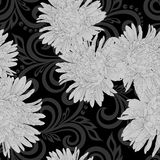 Black and white seamless pattern with aster flowers and abstract floral swirls Royalty Free Stock Photo