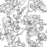 Black and white seamless pattern with Beautiful bouquet of sprin Stock Photos