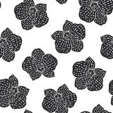 Black and white seamless pattern with hibiscus flowers. Floral monochrom endless texture Stock Images