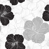 Black and white  seamless pattern with hibiscus flowers. Vector endless background with monochrome hibiscus flowers Stock Photos