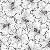 Black and white  seamless pattern with hibiscus flowers. Vector endless background with monochrome hibiscus flowers Royalty Free Stock Photography