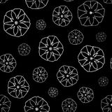 Black and White Seamless Pattern with  Ipomoea Flowers. Stock Photo