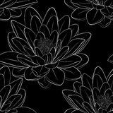 Black and white seamless pattern with lotus flowers. Stock Image
