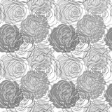 Black and white seamless pattern in roses Stock Images