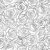 Black and white seamless pattern in roses with contours� Stock Images