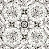 Black and white seamless pattern with sunflowers. Textile swatch or packaging design. Floral coloring page. Black and white seamless pattern with sunflowers Stock Image