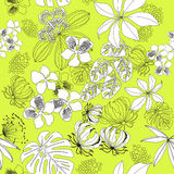 Black-white seamless pattern tropical plants on yellow background.vector  illustration Stock Image