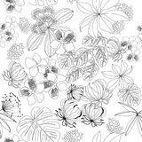 Black-white seamless pattern tropical plants on yellow bakground Royalty Free Stock Image
