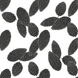 Black and white seamless vector pattern. Silhouettes of fir cones Stock Photos