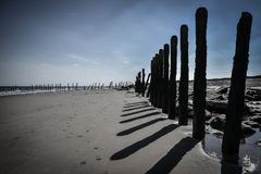 Black and white seascape with wooden pillars. As leading lines Stock Images