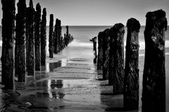 Black and white seascape with wooden pillars. As leading lines Royalty Free Stock Photography