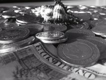 Black & White Seashell on Coins Royalty Free Stock Photography