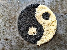 Black and white sesame royalty free stock photos