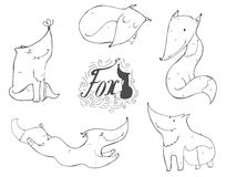 Black and white set of hand drawn cute foxes in different poses, sleeping, sitting, jumping, standing. Vector isolated on white il. Black and white set of hand Royalty Free Stock Images
