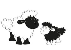 Black white sheep Royalty Free Stock Photo