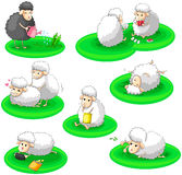 Black and white sheep activity collection set (vec Stock Images