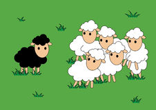 Black and white sheep. Black sheep is different and alone. Vector Illustration. Royalty Free Stock Image
