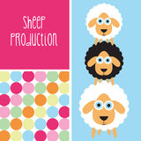 Black and white sheep  illustration Stock Images