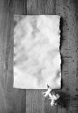 Black and white shot of old piece of paper with dried flowers Royalty Free Stock Images