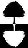 Black and white silhouette of a tree isolated on white-black background Stock Photo