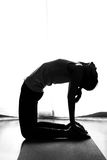Black and white silhouette yoga woman in Camel pose Royalty Free Stock Image
